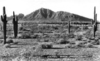 Camelback Mountain 1934